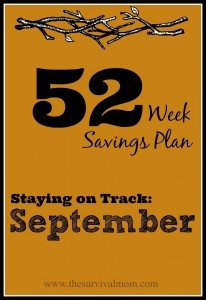 52 weeks savings plan