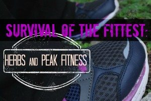 Survival of the Fittest: Herbs for Peak Fitness