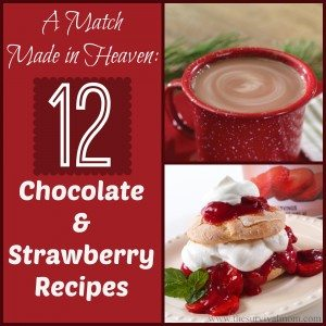 12 Chocolate Strawberry Recipes — Including 2 just for food storage!