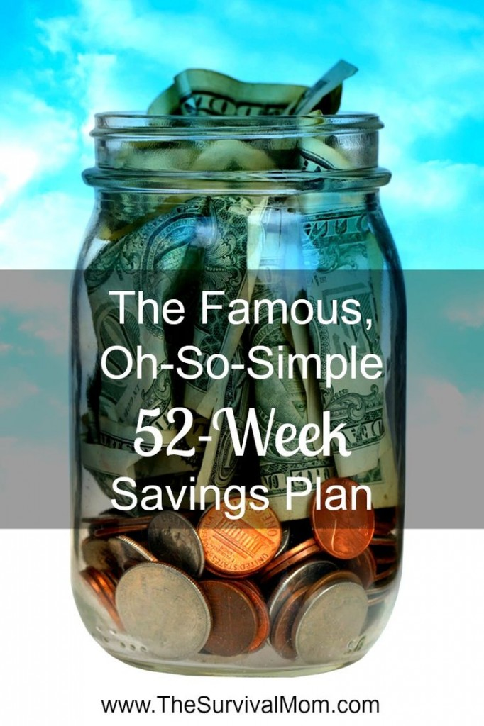 A simple, flexible, and fun savings plan! via | www.TheSurvivalMom.com