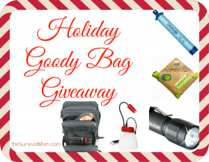 Holiday Goodie Bag Giveaway