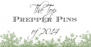 The Top Prepper Pins of 2014