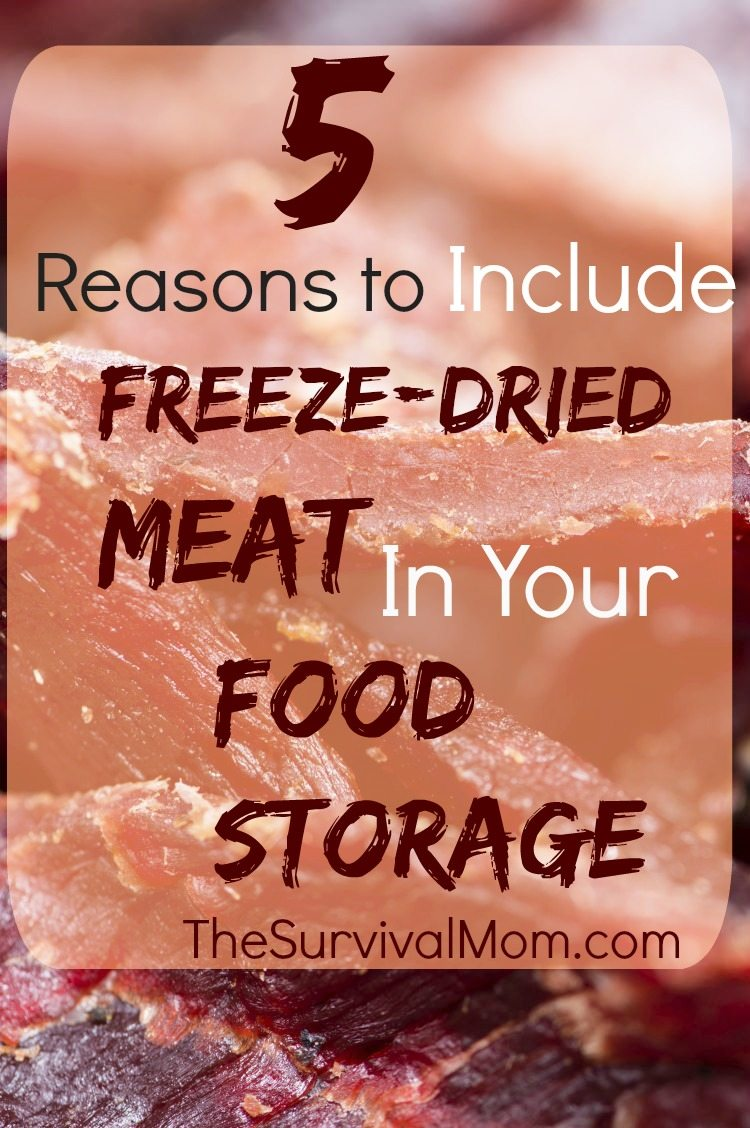 Freeze dried meat