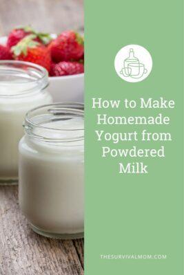 jars of homemade yogurt and bowl of strawberries, how to make homemade yogurt