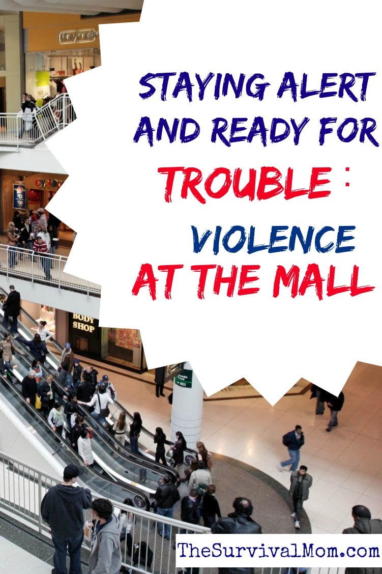 Mall violence. Stay alert and ready to survive.