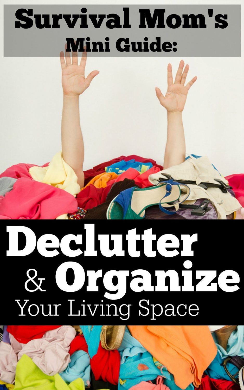 Declutter and Organizeg Mini Guide Cover
