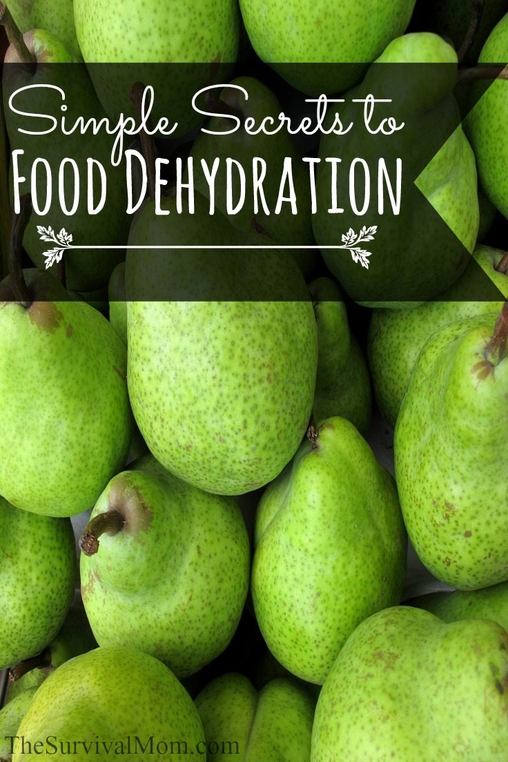 Dehydrating food is the simplest way to preserve it. Here are some very easy and basic foods to start with. | via www.TheSurvivalMom.com