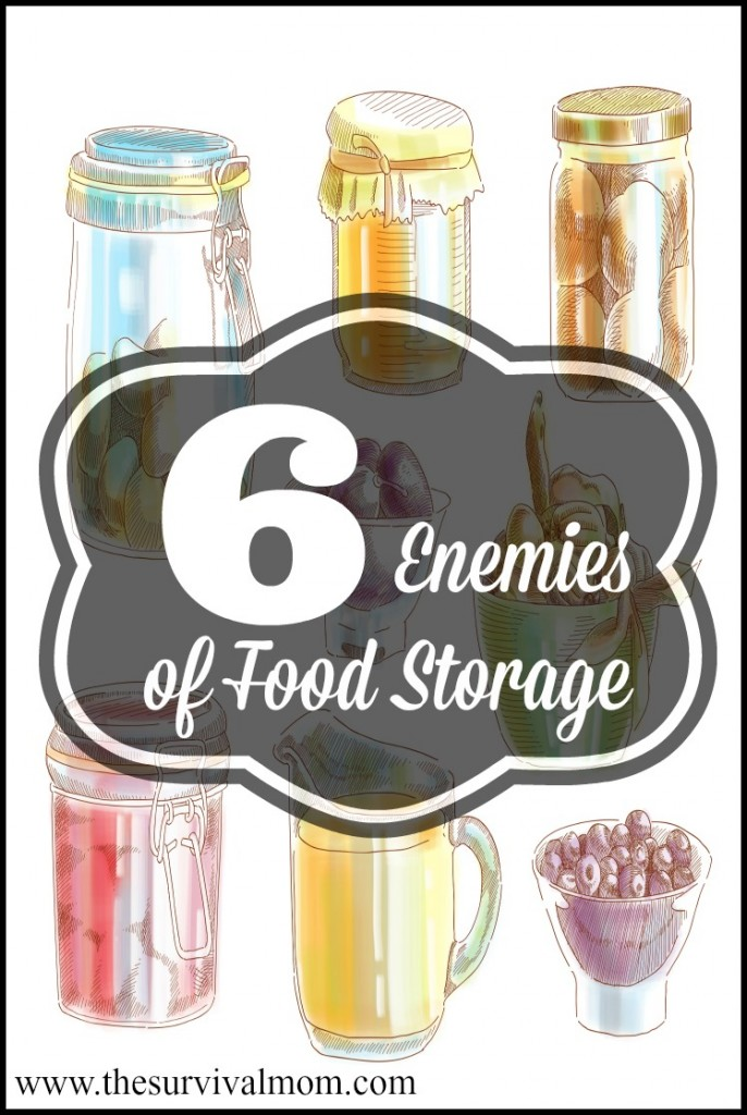 Food storage is an investment and should be treated as one. Since an insurance policy like you get for your house or car isn't possible, taking the extra steps to keep it safe from these six enemies is well worth your time. | via www.TheSurvivalMom.com