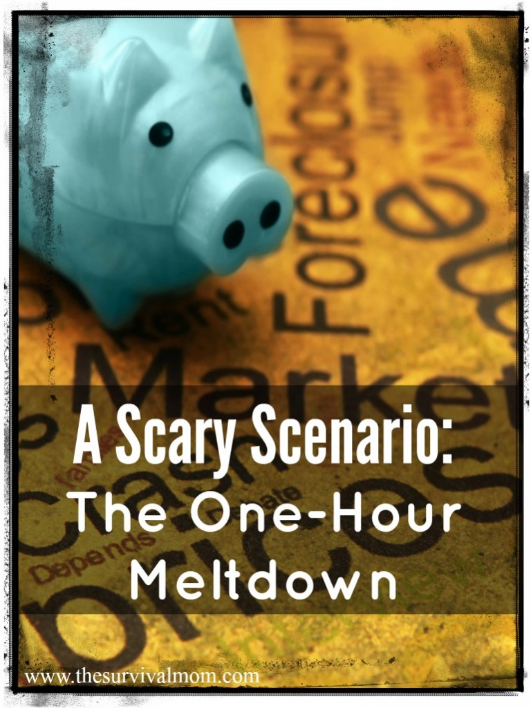 Does prepping seem a bit crazy to you? Read a bit more and learn about the one hour meltdown, a realistic vision of an economic collapse. | via www.TheSurvivalMom.com