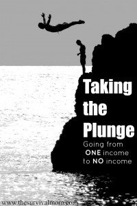 It's scary to give up an income, whether by choice or forced to by circumstances. Here is one writer's plan for doing just that. | www.TheSurvivalMom.com