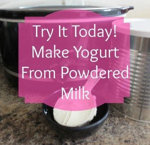 Almost no one likes drinking reconstituted powdered milk, so what to do with it, other than baking? Make homemade yogurt!!!  | via www.TheSurvivalMom.com