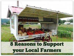 8 Reasons to Support Local Farmers