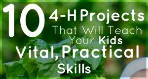 The 4-H Club teaches kids important skils. Here are a few. | via www.TheSurvivalMom.com