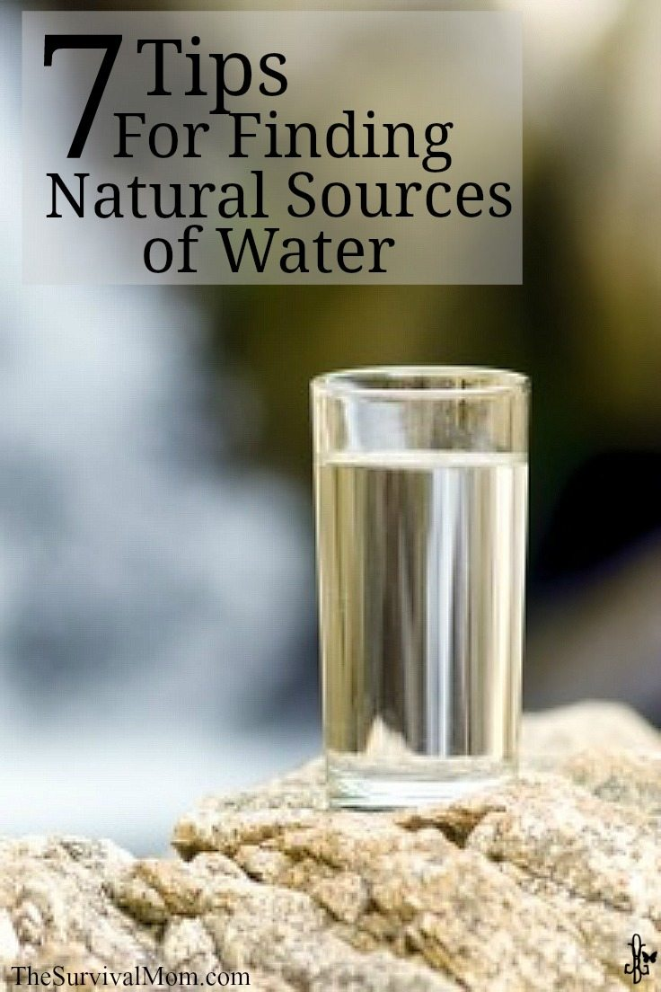 7 tips for finding natural water sources | via www.TheSurvivalMom.com