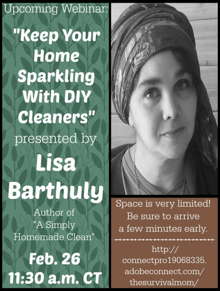 DIY household cleaning products -- Free webinar!  www.TheSurvivalMom.com