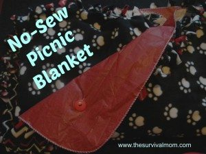 DIY No-Sew Waterproof Picnic Blanket