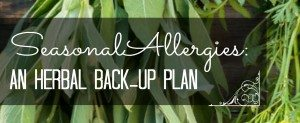 Herbs for Seasonal Allergies: An Herbal Back Up Plan