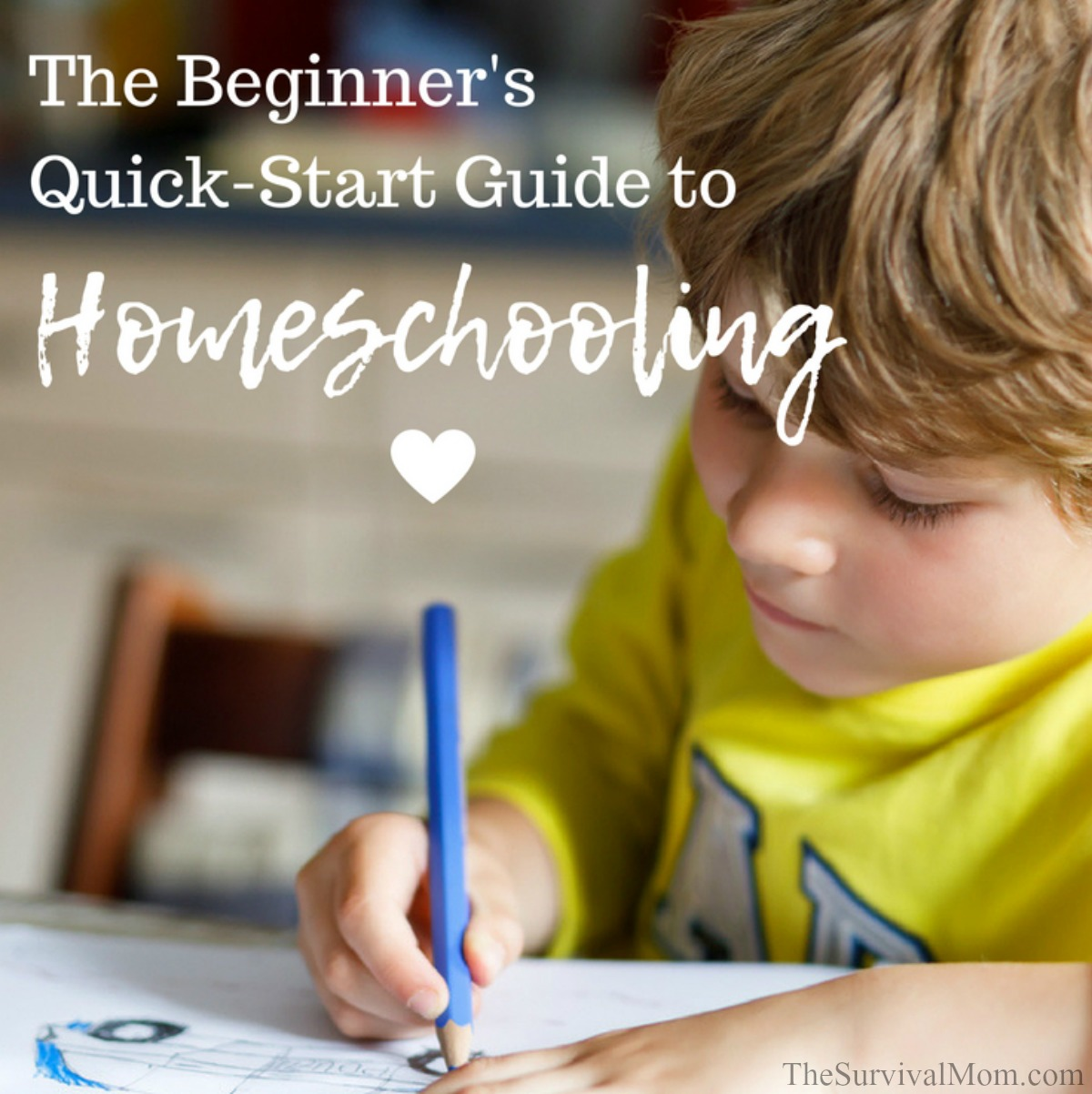 The Beginner\'s Quick-Start Guide to Homeschooling