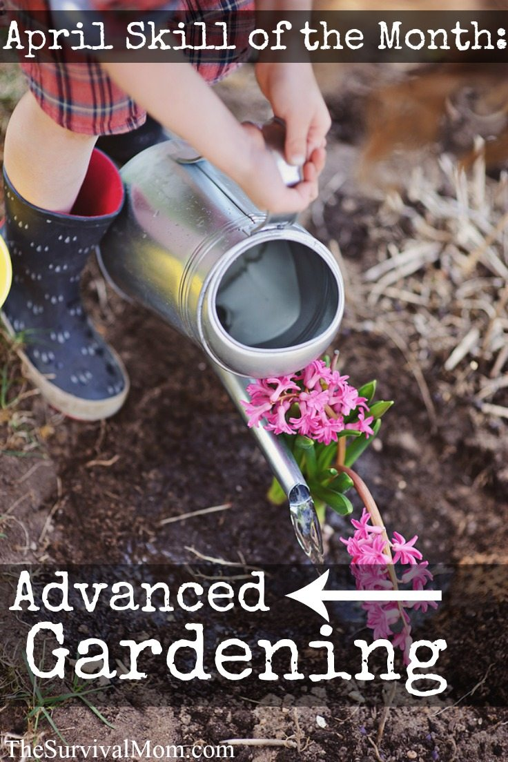 Advanced gardening skills anyone can learn.
