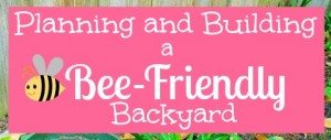 Planning and Building a Bee-Friendly Backyard