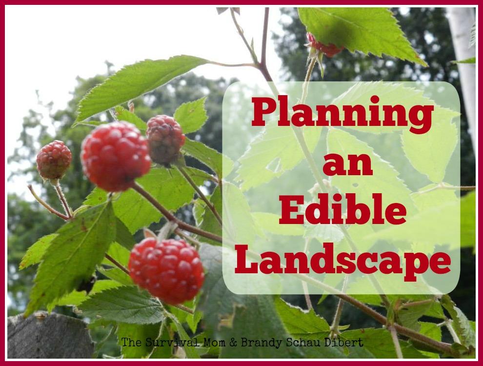 planning an edible landscape