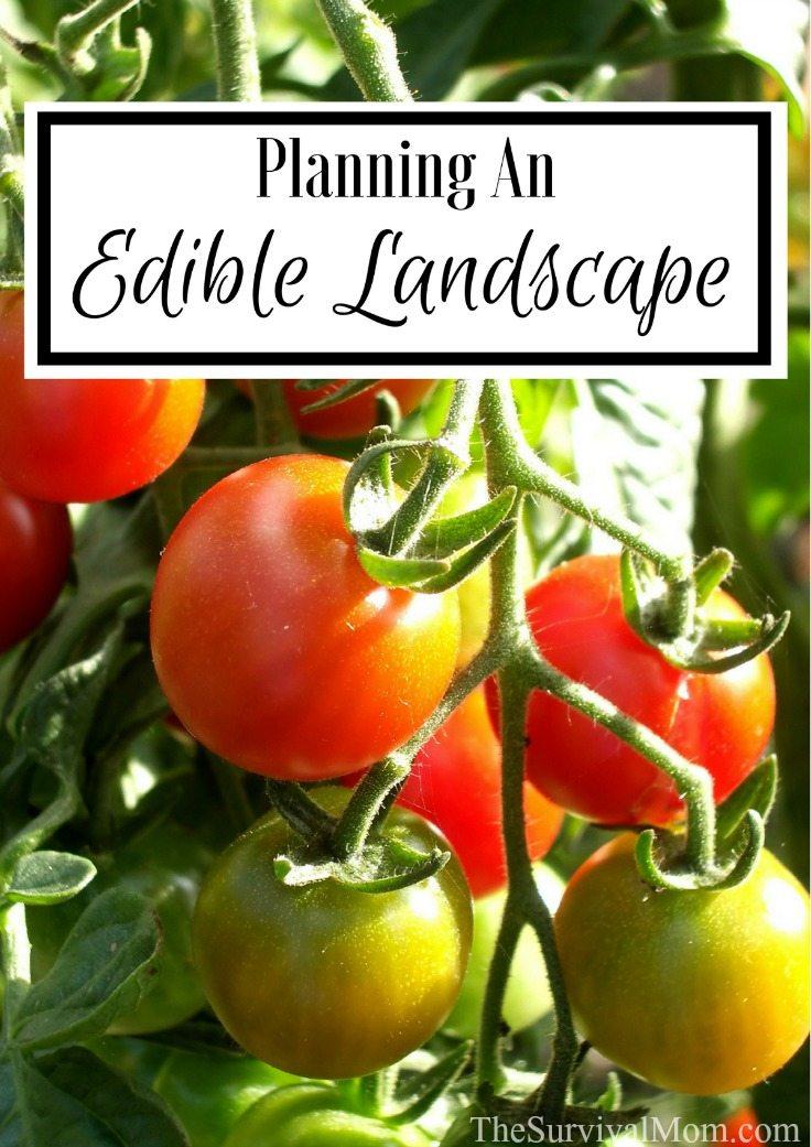 Planning An Edible Landscape via The Survival Mom