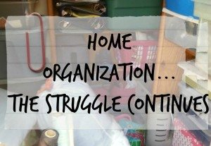 18 Brilliant Home Organization Tips: The Struggle Continues!