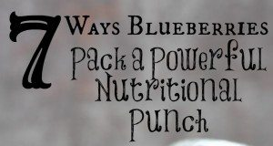 Blueberries pack powerful nutritional punch via The Survival Mom