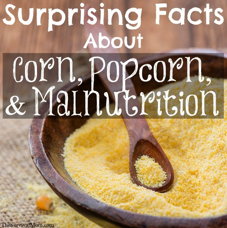 corn, popcorn, and malnutrition