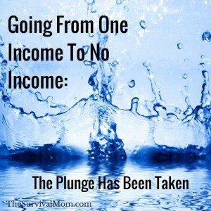 living on no income