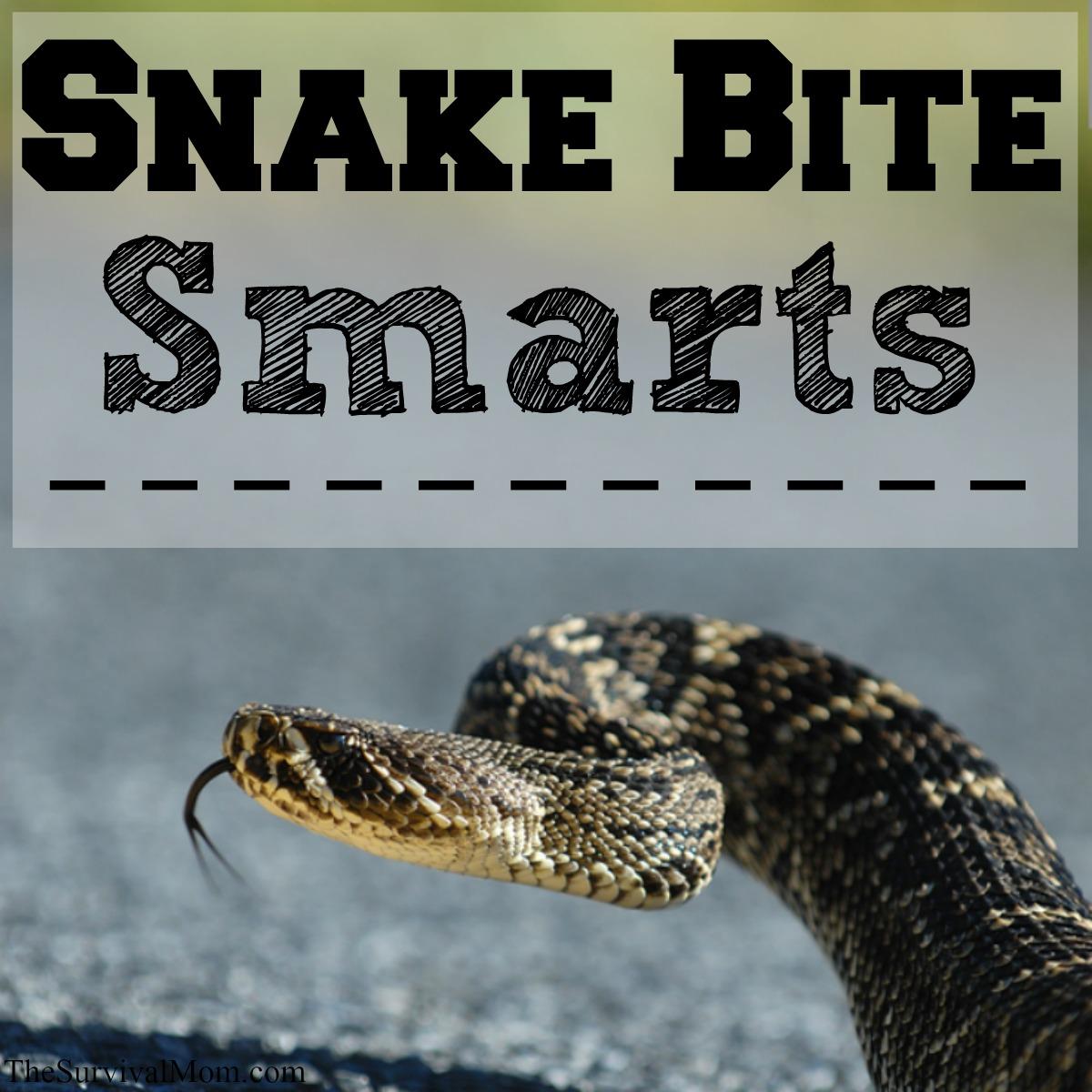 wilderness snake bite help