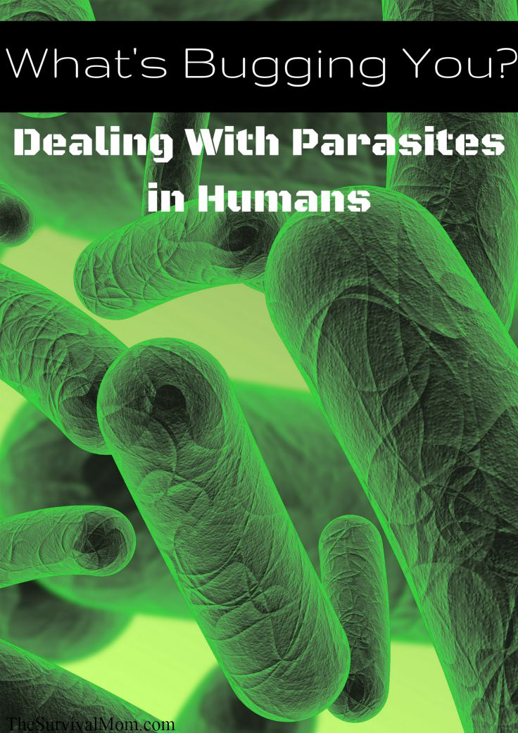 parasites in humans