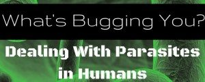 What's Bugging You? Dealing With Parasites in Humans
