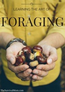 Learning the Art of Foraging