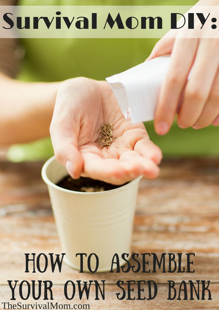 make your own seed bank