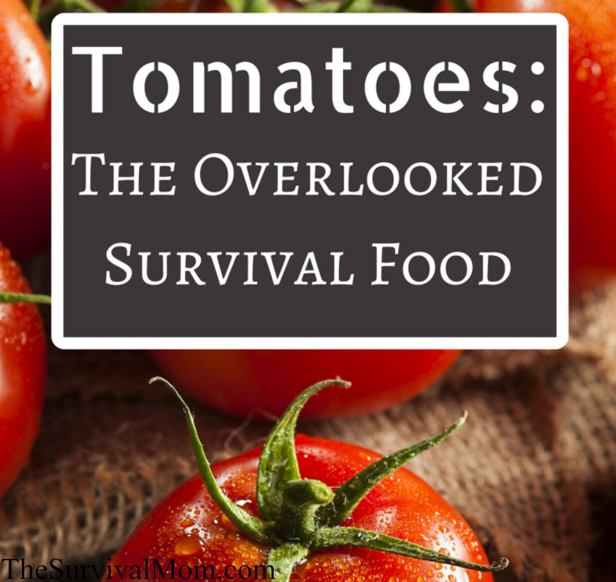 stock up on tomatoes
