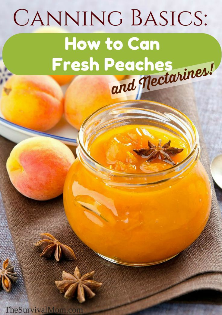 canning peaches and nectarines