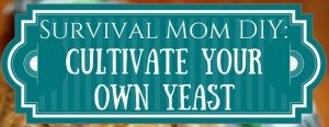 How to Cultivate Your Own Yeast