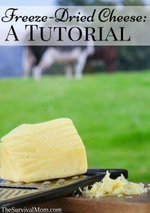 Freeze-Dried Cheese: A Tutorial