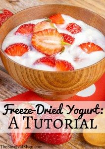 Freeze-Dried Yogurt: A Tutorial