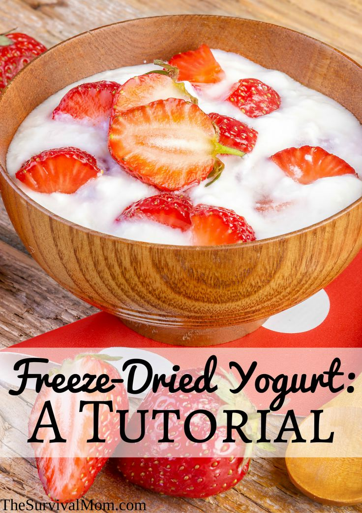 freeze dried yogurt
