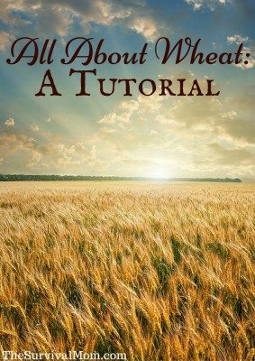 All About Wheat: A Tutorial