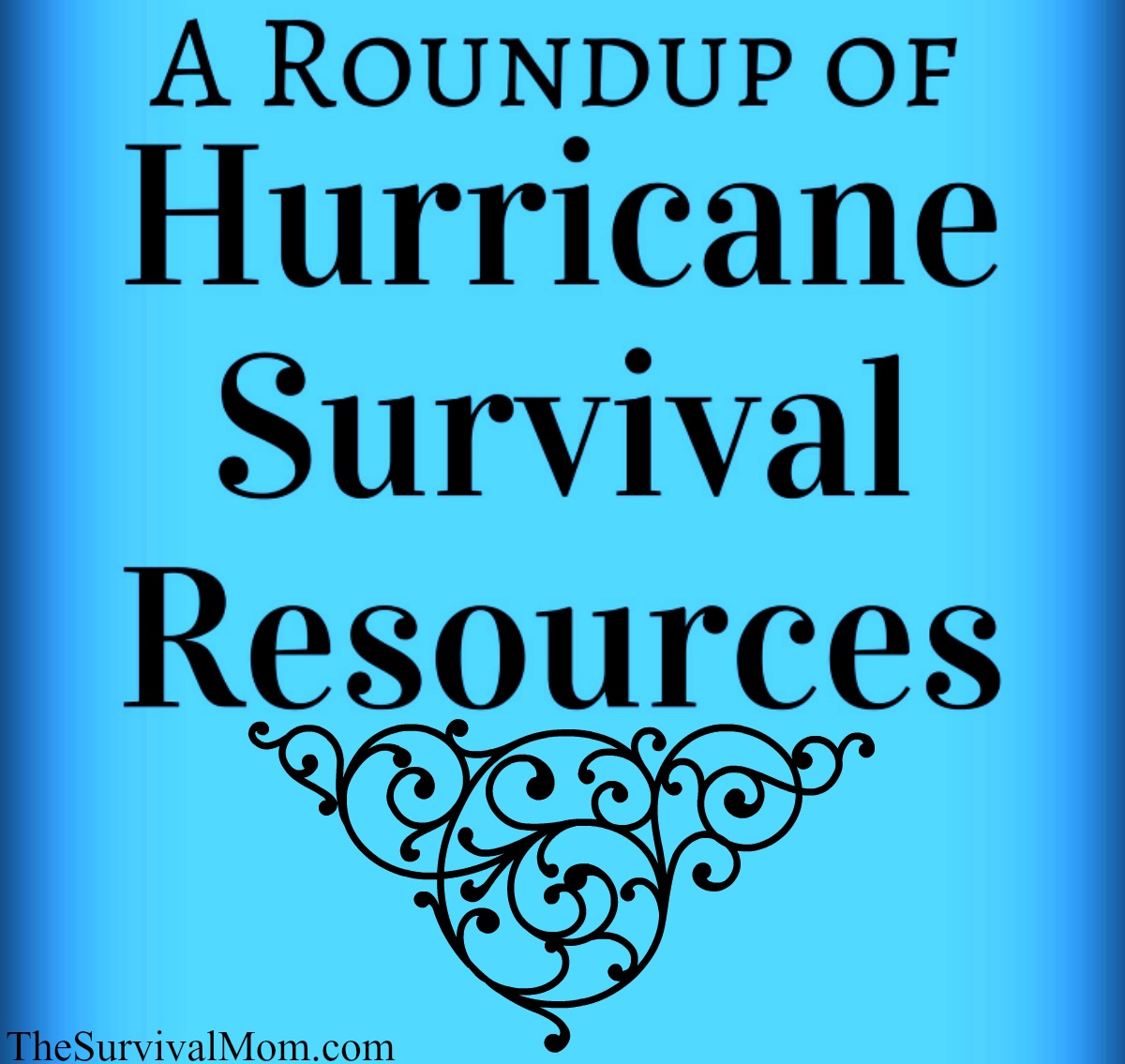 hurricane survival