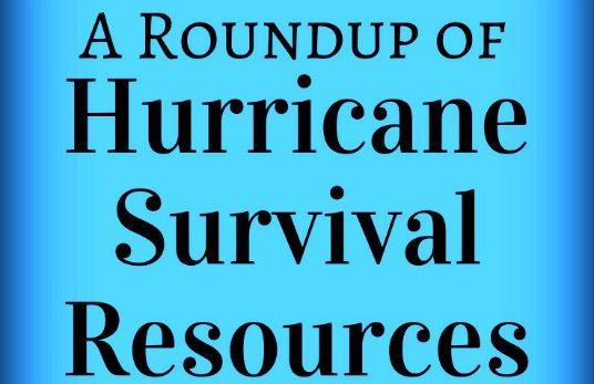 hurricane survival