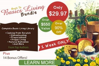 Back to Basics Living Bundle: Over 60 ebooks, online courses, planners and more!