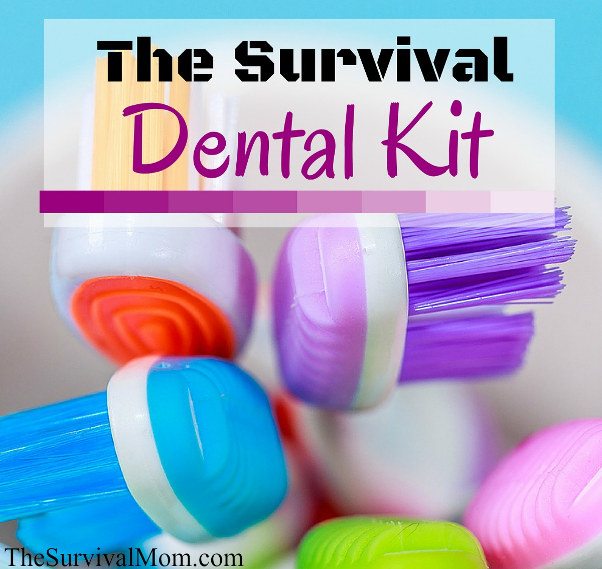 dental survival kit