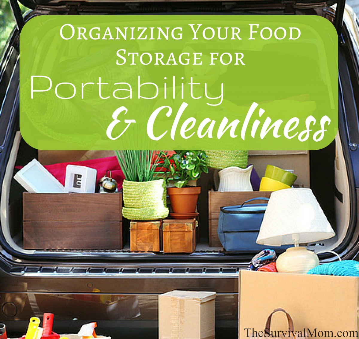 moving food storage