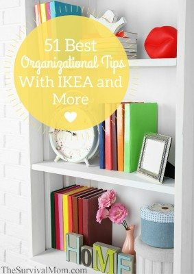 51 Best Organizational Tips with Ikea and More