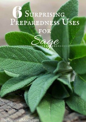6 Surprising Preparedness Uses for Sage