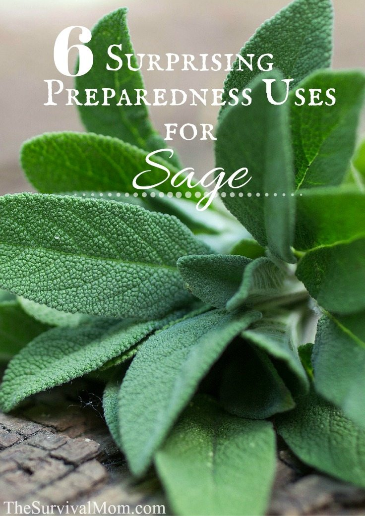 uses for sage